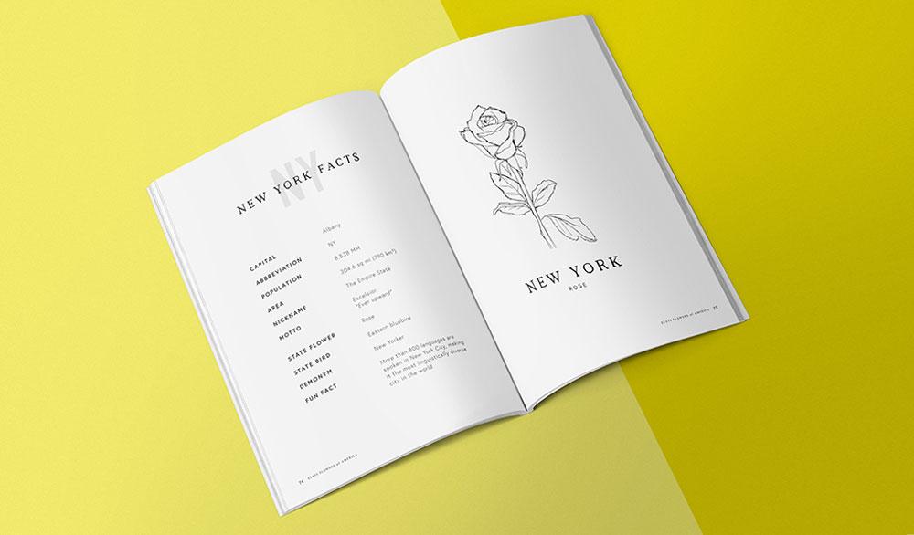 State Flowers of America, New York